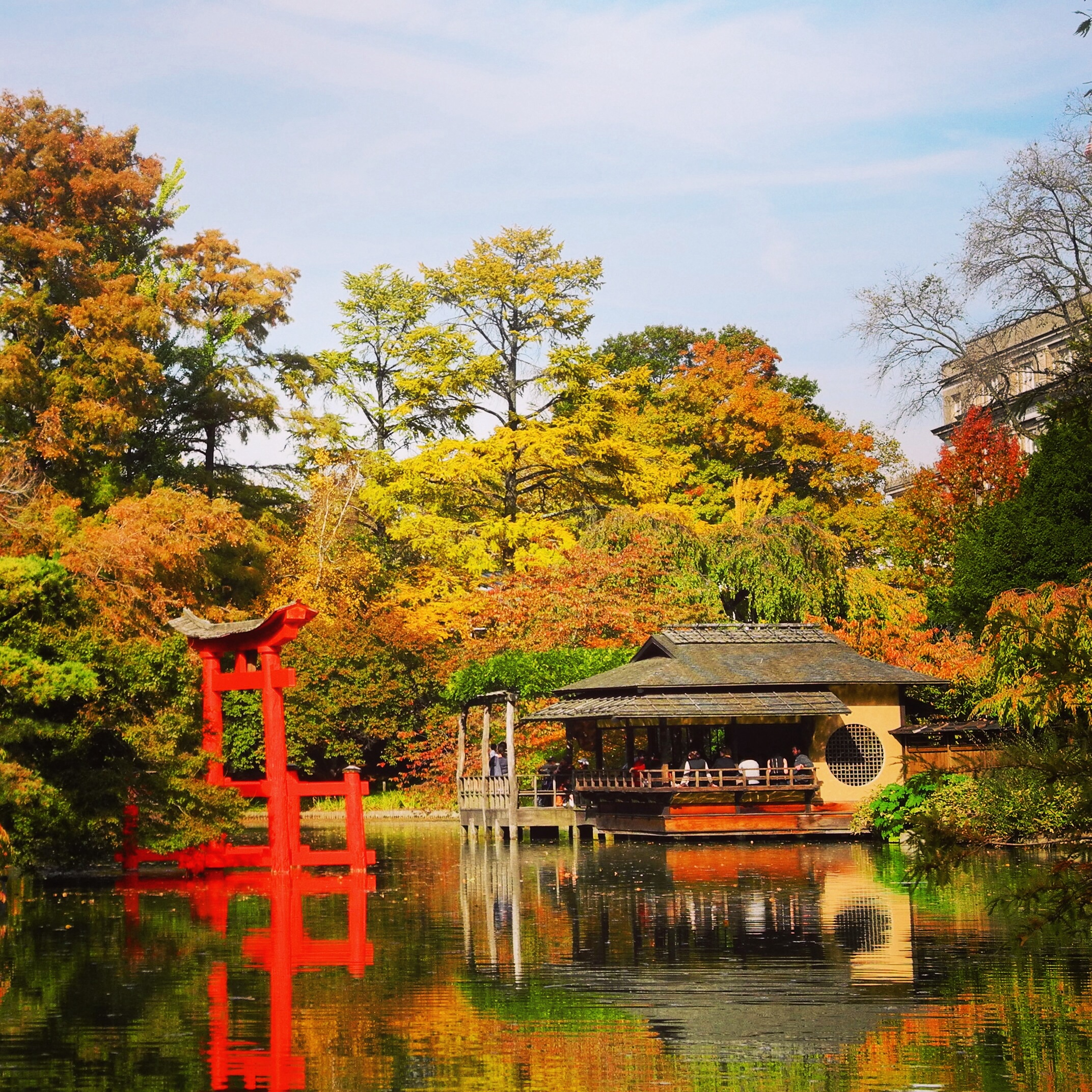 Autumn in new york city the texasian travels - Hotels near brooklyn botanical garden ...